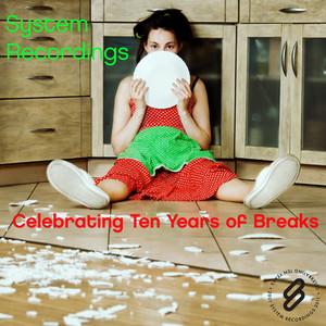 VARIOUS - Celebrating Ten Years Of Breaks