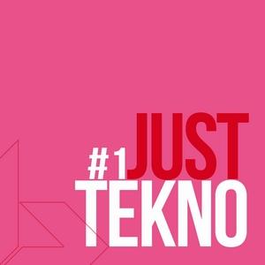 VARIOUS - Just Tekno