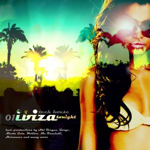VARIOUS - Ibiza: Tech House Tonight # 01