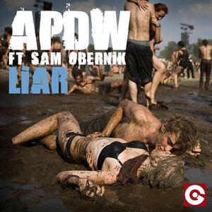 ANALOG PEOPLE IN A DIGITAL WORLD feat SAM OBERNIK - Liar