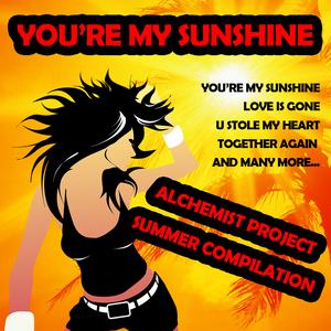 ALCHEMIST PROJECT - Summer Compilation