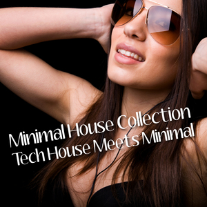 VARIOUS - Minimal House Collection: Tech House Meets Minimal