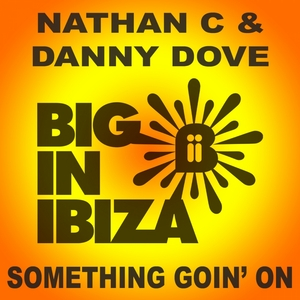 DOVE, Danny/NATHAN C - Something Goin' On