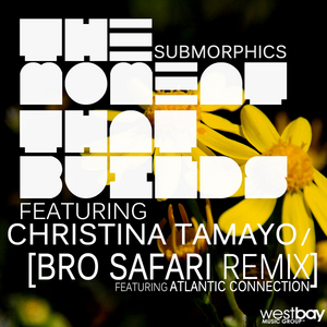 SUBMORPHICS feat CHRISTINA TAMAYO - The Moment That Builds