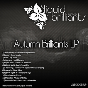 VARIOUS - Autumn Brilliants LP