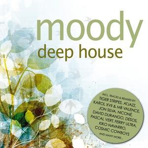 VARIOUS - Moody Deep House