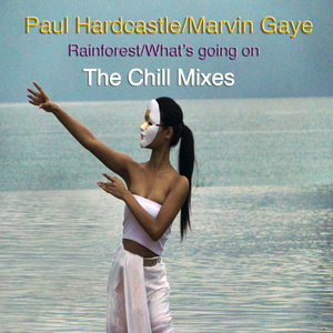 HARDCASTLE, Paul - Rainforest/Whats Going On (The Chill Mixes)