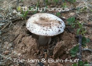DUSTY FUNGUS - Toe Jam & Bum Fluff EP
