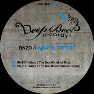 BNZO - What's The Use