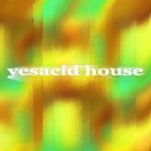 VARIOUS - Yesacid House