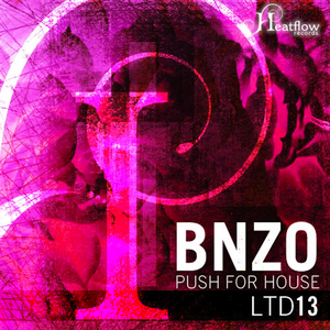 BNZO - Push For House