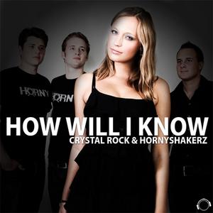 CRYSTAL ROCK/HORNYSHAKERZ - How Will I Know