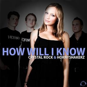 CRYSTAL ROCK/HORNYSHAKERZ - How Will I Know (Remix Bundle)