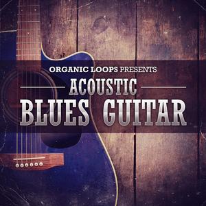ORGANIC LOOPS - Acoustic Blues Guitar (Sample Pack WAV)