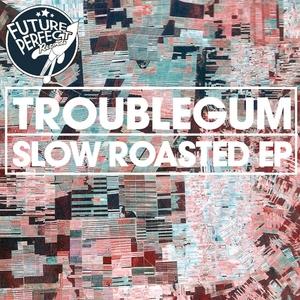 TROUBLEGUM - Slow Roasted EP