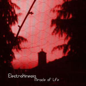 ELECTROKINESIA - Miracle Of Life