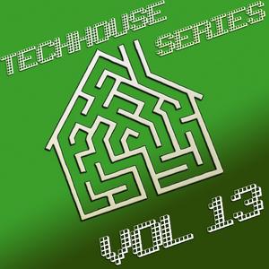 VARIOUS - TechHouse Series Vol 13