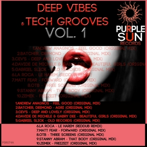 VARIOUS - Deep Vibes & Tech Grooves Vol 1 (unmixed tracks)