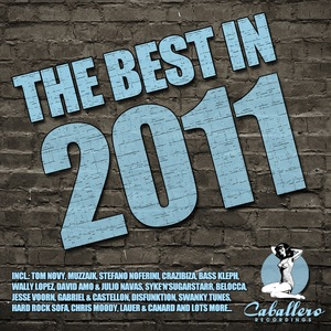 VARIOUS - The Best In 2011