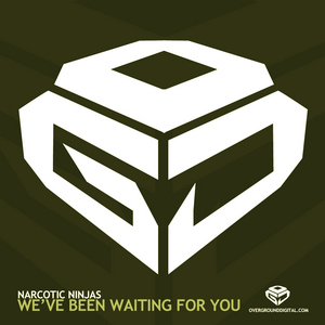 NARCOTIC NINJAS - We've Been Waiting For You