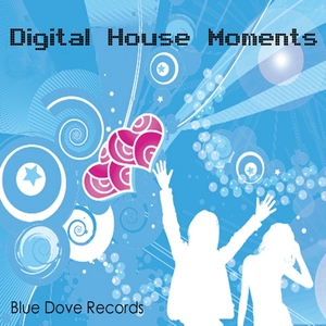 VARIOUS - Digital House Moments
