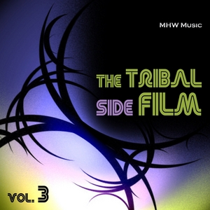 VARIOUS - The Tribal Side Film Vol 3