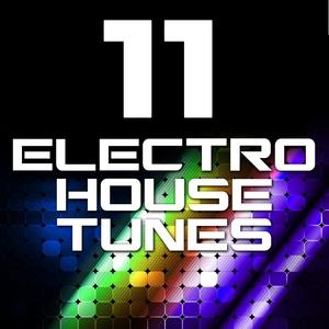 VARIOUS - 11 Electro House Tunes (Volume 2)