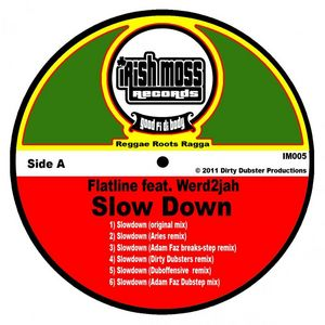 FLATLINE feat WERD2JAH - Slow Down