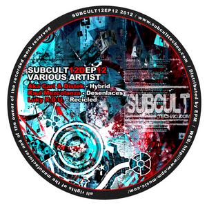 AKA CARL/DISTEK/RAUL MEZCOLANZA/LUKY RDU - Subcult12 EP 12