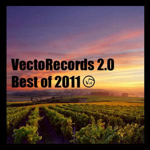VARIOUS - VectoRecords 20 Best Of 2011