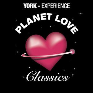 YORK - Experience
