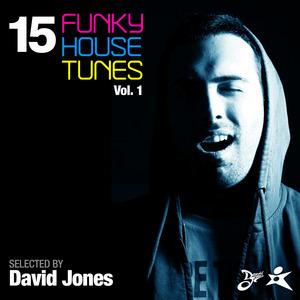 VARIOUS - 15 Funky House Tunes Vol 1 - Selected By David Jones