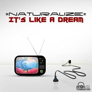NATURALIZE - Its Like A Dream