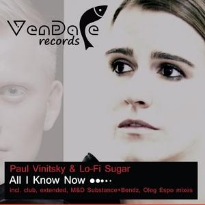 VINITSKY, Paul/LO-FI SUGAR - All I Know Now