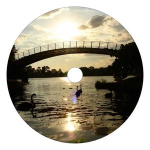 VARIOUS - Mojear Sounds Vol 1