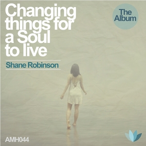 ROBINSON, Shane/STIAN WRAALSEN - Changing Things For A Soul To Live