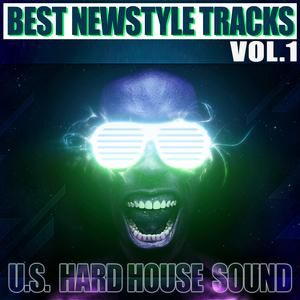 VARIOUS - Best Newstyle Tracks Vol 1