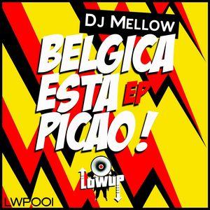 DJ MELLOW - Belgica Esta Picao!
