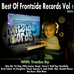 VARIOUS - Best Of Frontzide Records Vol 1