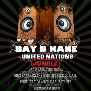 BAY B KANE/VARIOUS - Bay B Kane Presents: The United Nations Of Jungle