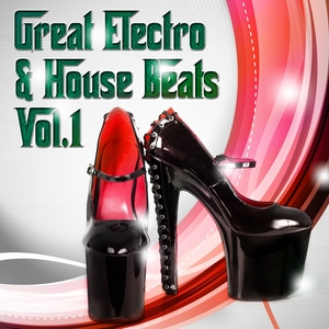 VARIOUS - Great Electro & House Beats Vol 1 (Ultimate Selection Of Electronic Sound Anthems)
