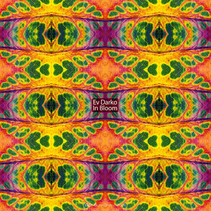 EV DARKO - In Bloom