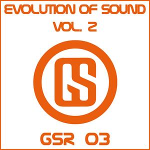 VARIOUS - Evolution Of Sound Vol 2