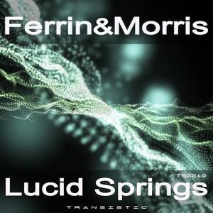 FERRIN & MORRIS - Lucid Springs