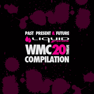 VARIOUS - Reminiscence WMC 20Twelve Compilation