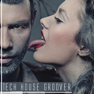 VARIOUS - Tech House Groover