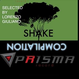 VARIOUS - Shake Compilation Prisma Record (Selected By Lorenzo Giuliano)