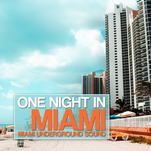 VARIOUS - One Night In Miami (Miami Underground Sound)