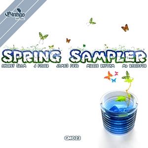 ANDREY SLAM/J FADER/JAMES FEUD/MIDDLE RHYTHM/MR RADIATOR - Spring Sampler