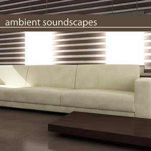 VARIOUS - Ambient Soundscapes
